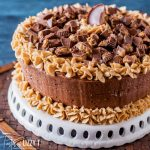 Reese's Chocolate Peanut Butter Cake on a cake plate