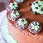 Grasshopper Mint Chocolate Cake