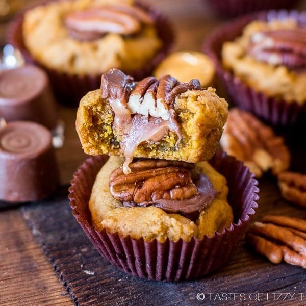 pumpkin turtle cookies