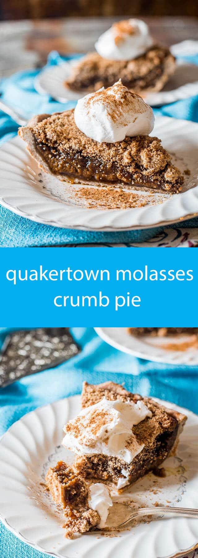 quakertown molasses crumb pie / dessert recipe with molasses / old fashioned recipes / pie recipes / crumb topping for pie / molasses pie