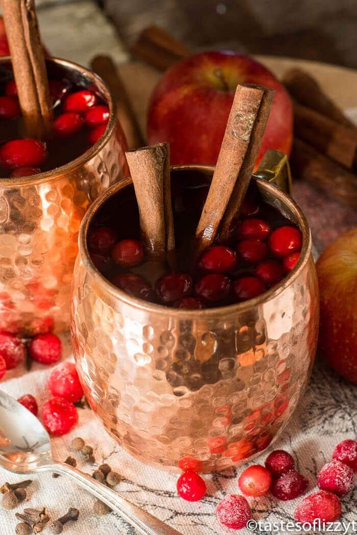 Spiced Cranberry Apple Cider {An Easy 15 Minute Hot Drink Recipe}