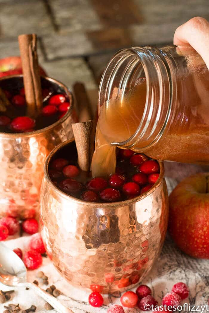 Spiced Cranberry Apple Cider {An Easy 15 Minute Hot Drink ...