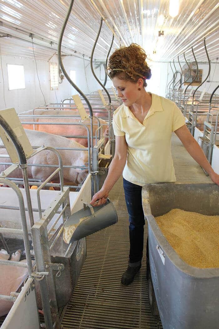 visiting-an-ohio-hog-farm-10