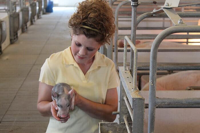 visiting-an-ohio-hog-farm-3