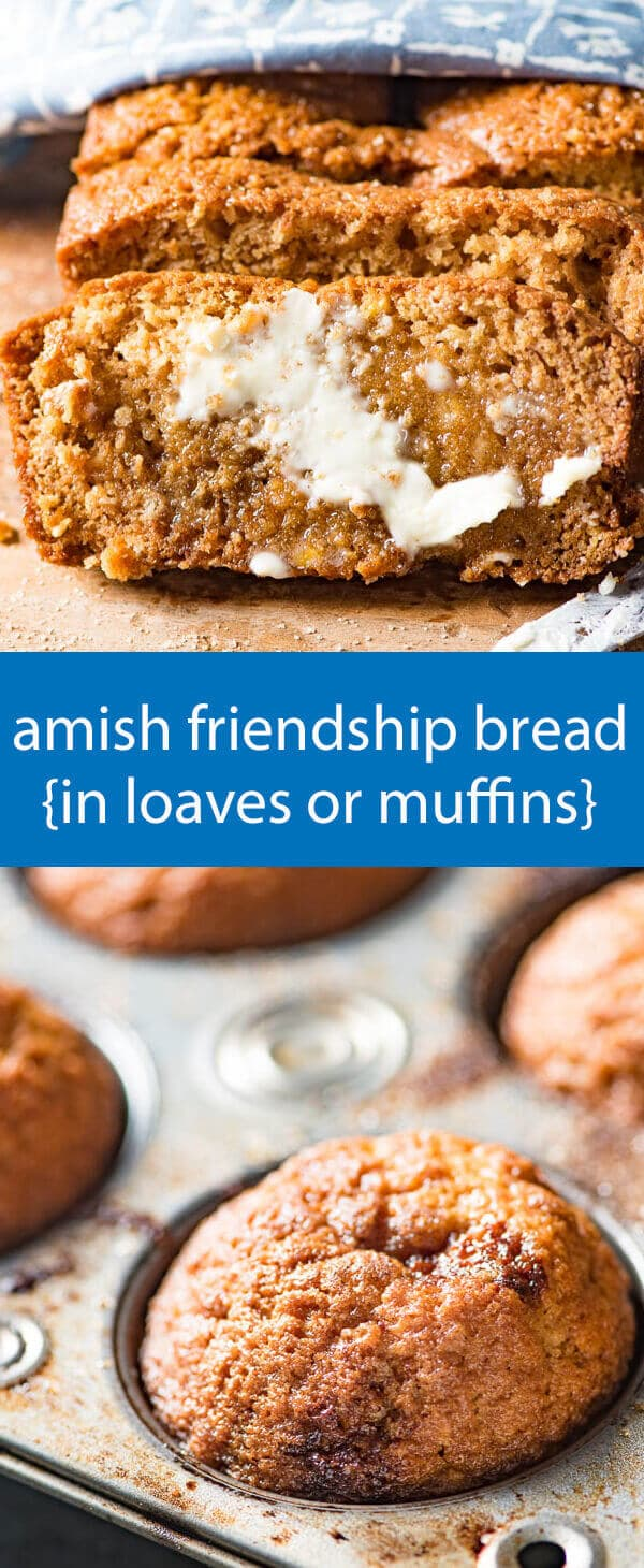 amish friendship bread recipe / amish sourdough starter / sweet sourdough / cinnamon quick bread / easy bread recipe / friendship bread