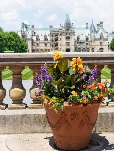 Hints on the best places to stay and must-see things to do in Asheville NC. From waterfalls to downtown shops to historical homes, this is an ideal family vacation experience.