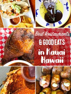 The best restaurants in Kauai. Don't miss these restaurants, both causal and sit-down, bakeries and food trucks! Our favorite was Porky's...and you have to get a slice of Hula Pie!