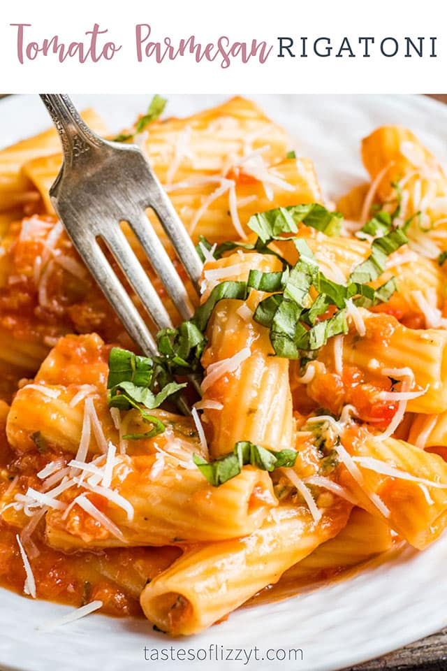 A plate of food, with Sauce and Rigatoni