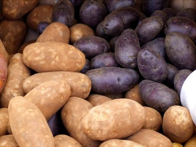 common types of potatoes at the farmer's market
