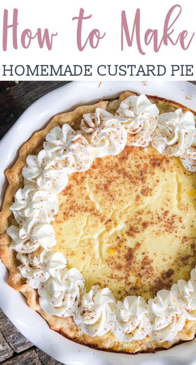 A close up of a custard pie title image