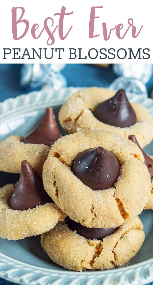 Calling all chocolate peanut butter lovers! This classic Peanut Butter Blossoms cookie recipe is one you'll need in your recipe box. via @tastesoflizzyt