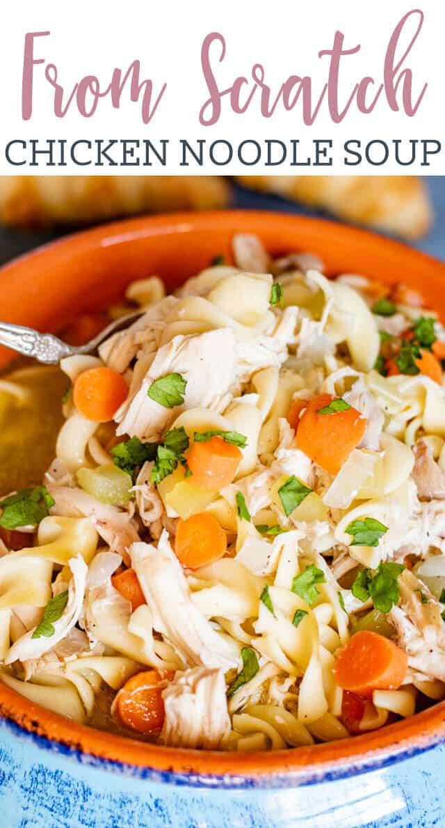 Chicken Noodle Soup title image