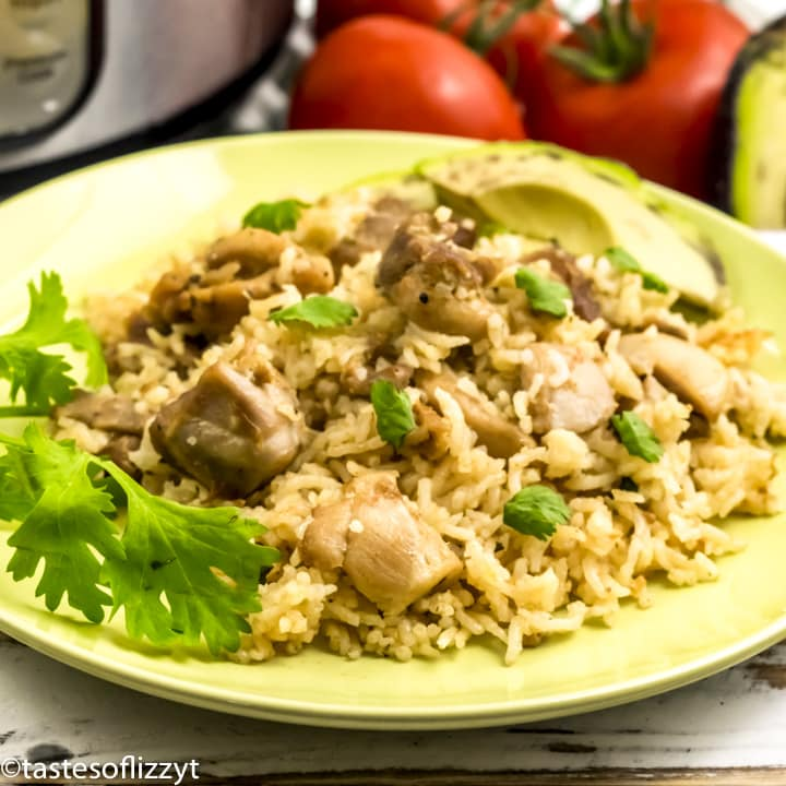 Salsa Verde Chicken and Rice on a plate