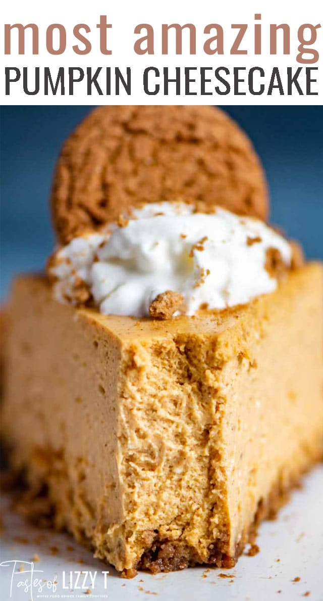 The best pumpkin cheesecake with a gingersnap crust is easy too! How to make extra creamy cheesecake with sour cream and hints for a water bath (no cracks!). via @tastesoflizzyt
