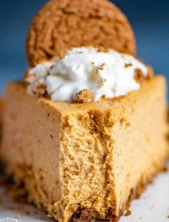 Pumpkin Cheesecake with gingersnap