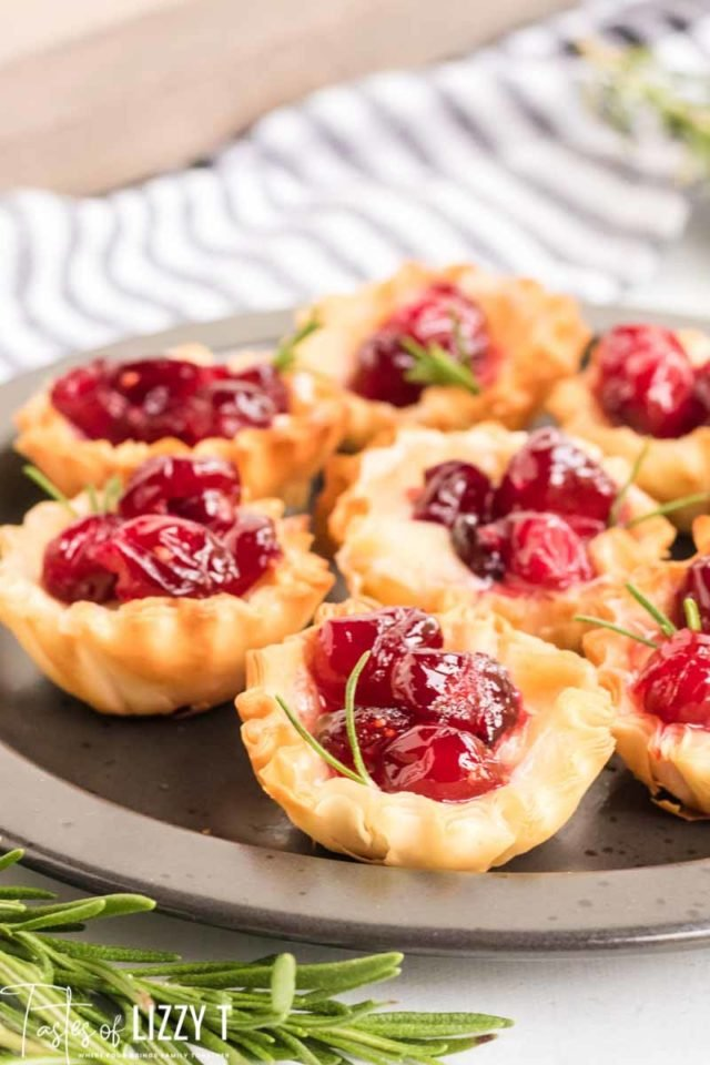 Food on a plate, with cranberries