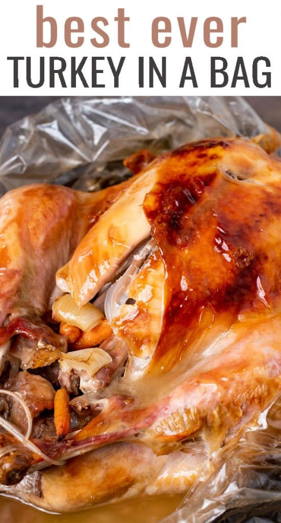 A close up of food, with turkey and Oven bag