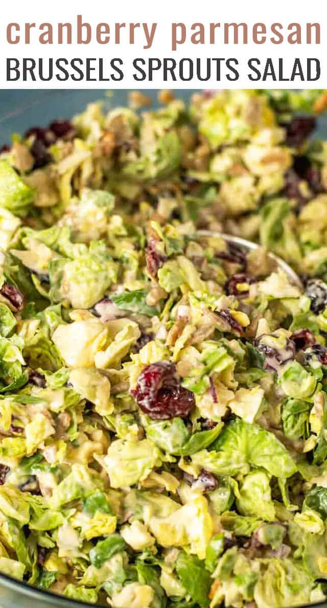 Don't knock brussels sprouts until you've tried this salad! Creamy Brussels Sprouts Salad is full of sunflower seeds, parmesan and cranberries. Ready for the table in 20 minutes. #salad #brusselssprouts #salad via @tastesoflizzyt