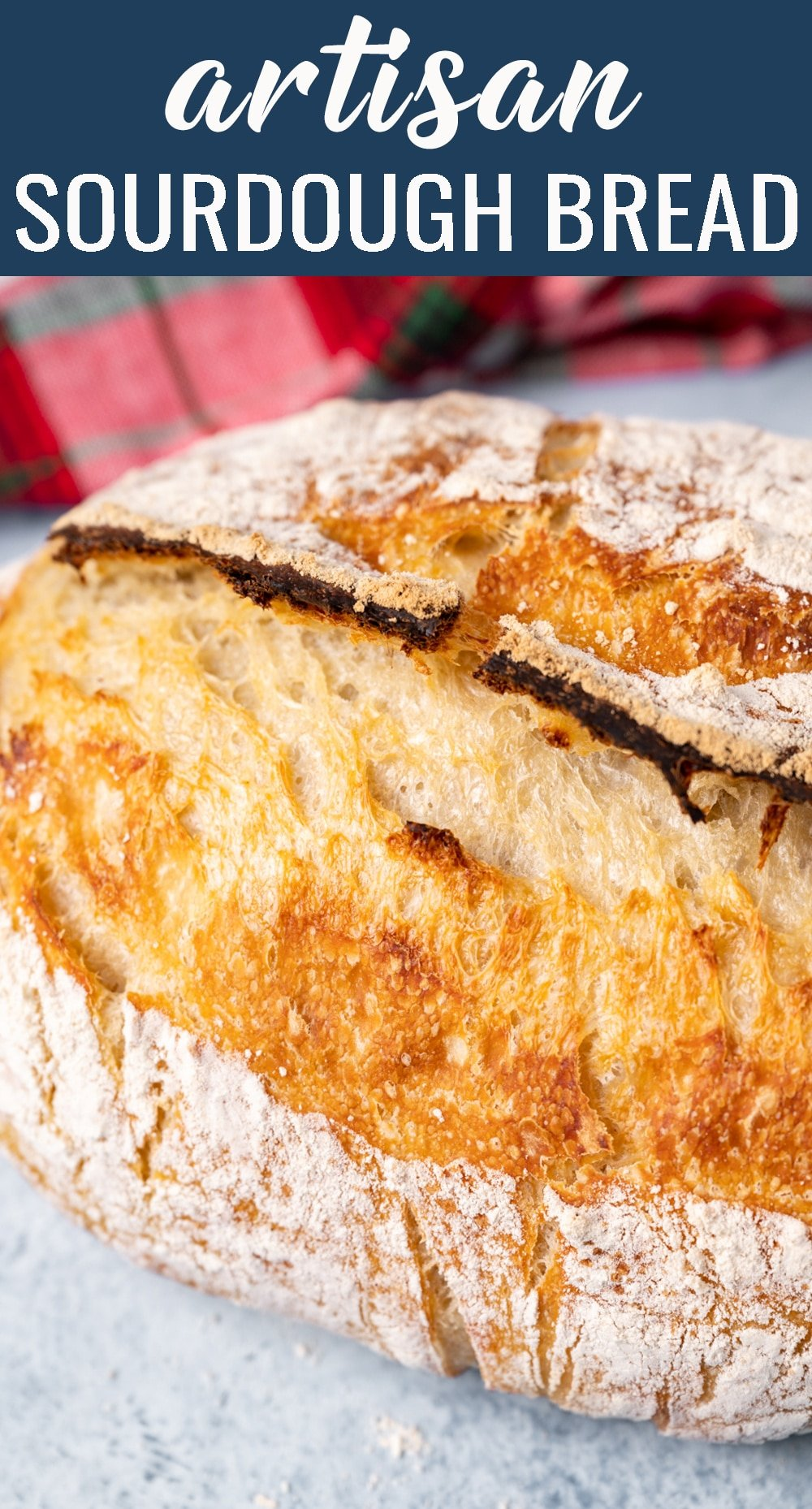 A beginner's guide on how to make a gorgeous loaf of Artisan Sourdough Bread! Complete tips for a homemade white bread baked in a dutch oven. via @tastesoflizzyt