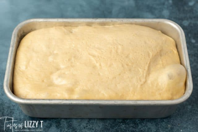 risen bread dough in a loaf pan