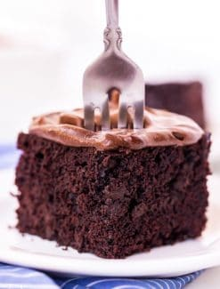 Chocolate Crazy Cake with a fork