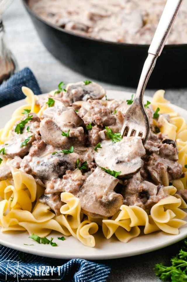 pile of beef stroganoff with noodles and a fork