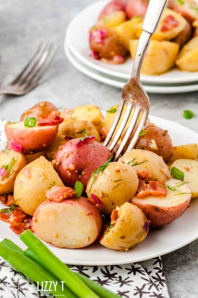 german potato salad on a plate with a fork