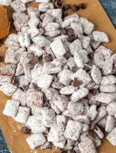 pile of puppy chow