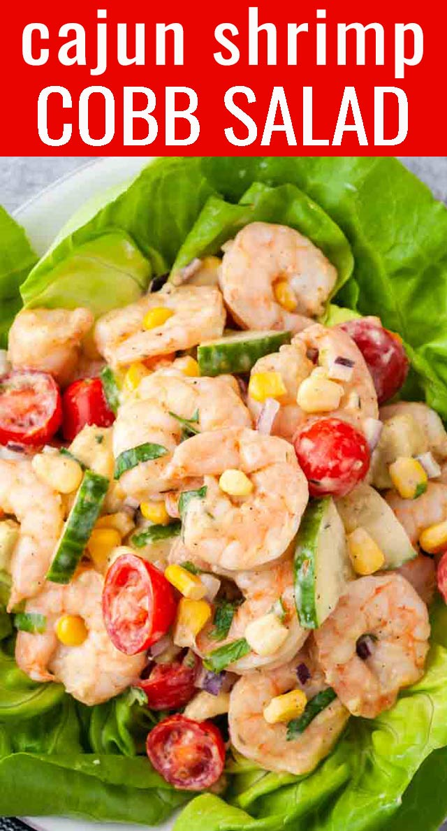Refreshing, crunchy, cool and with a hint of spice, this Cajun shrimp salad is the perfect weeknight dinner recipe! Fresh and light for summer. via @tastesoflizzyt