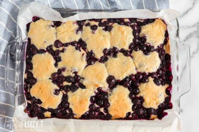 baked blueberry coconut bars