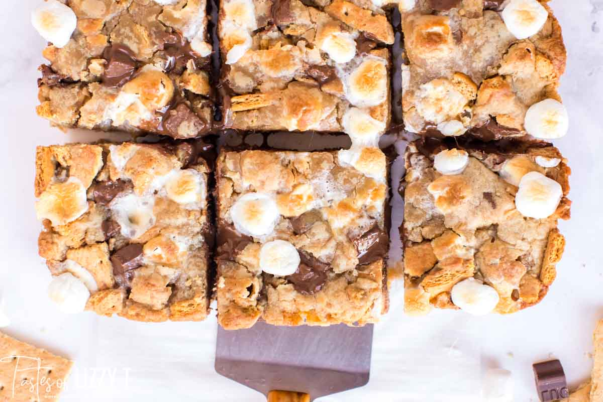 overhead view of sliced S'mores Bars