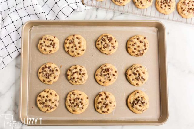 malted milk chocolate chip cookies on a pan
