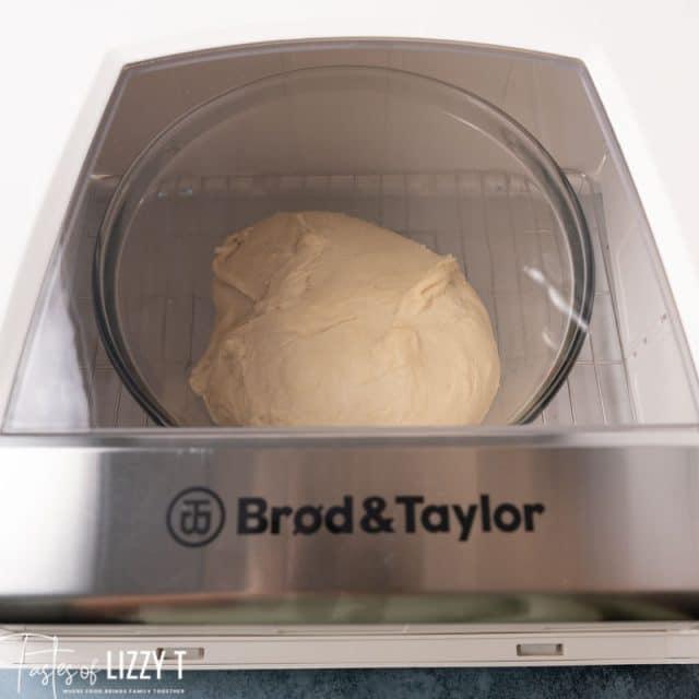 dough rising in a bread proofer