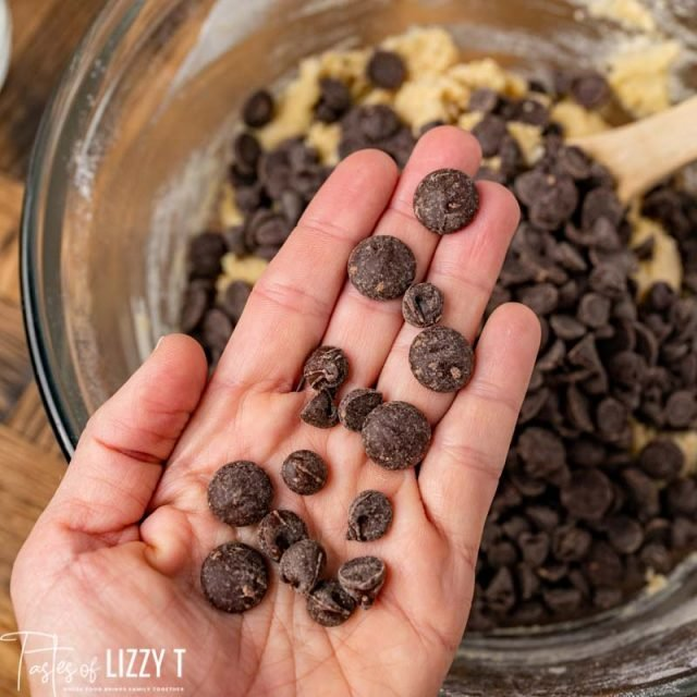 a hand holding chocolate chips