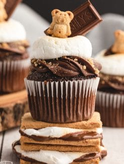 a closeup of a cupcake with marshmallows and chocolate