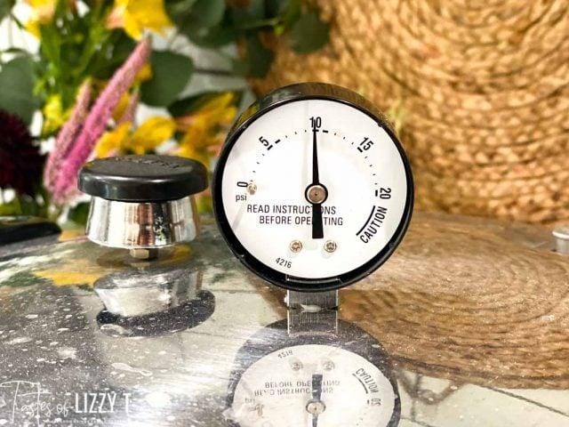 pressure cooker guage