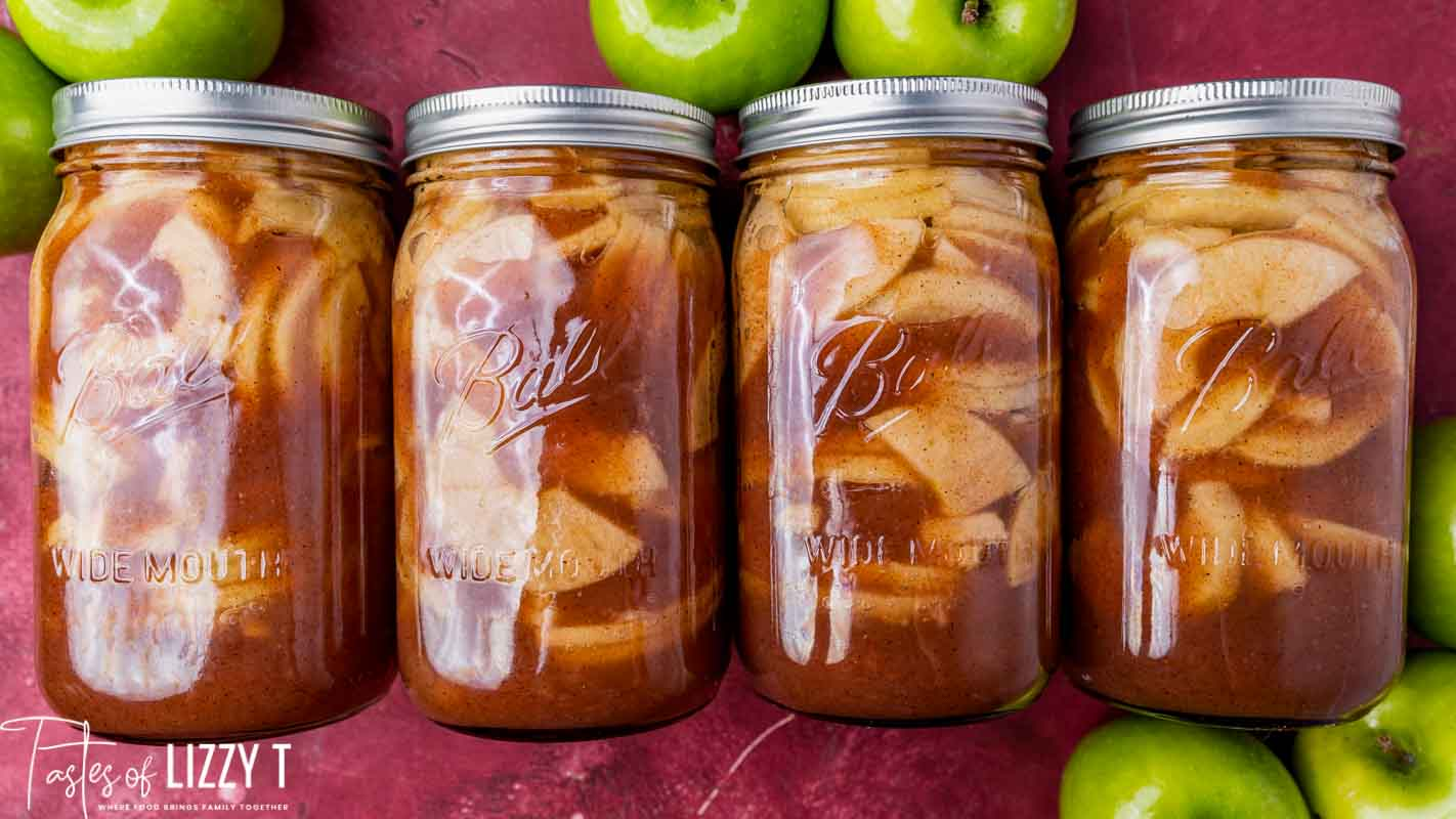 Homemade Apple Pie Filling Recipe   Tastes of Lizzy T
