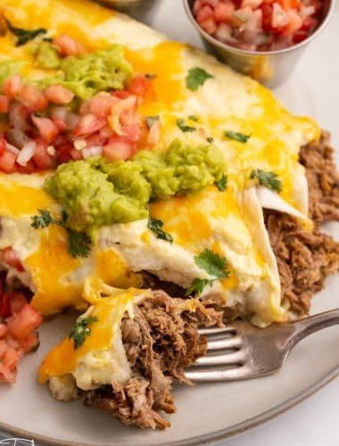 shredded beef enchiladas with guacamole and fresh salsa on a plate